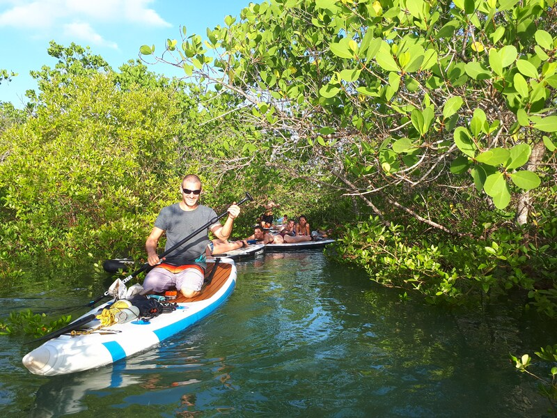 Mangrove Eco-Adventures